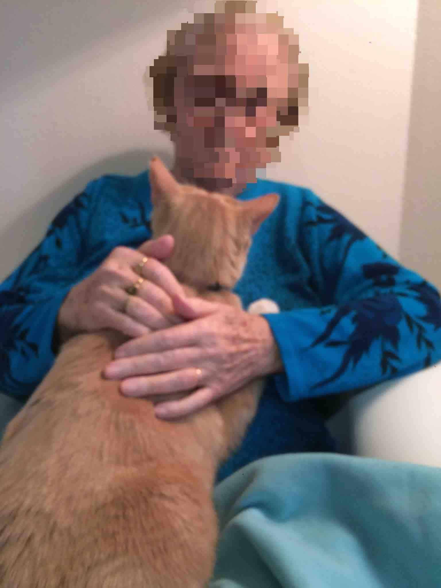 therapie alzheimer demences sarthe